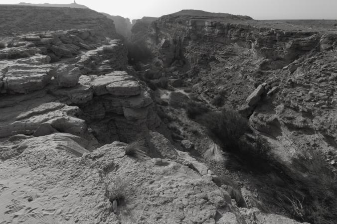 منتزة الثمامة  - من تصويري ٢٠١٣